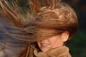 Штормовой ветер снова будет хозяйничать в Петербурге