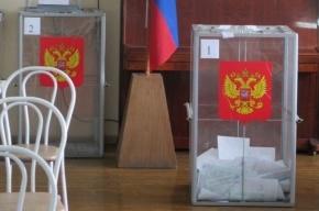 Горизбирком не увидел «каруселей» на выборах в Петербурге
