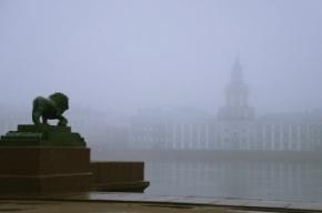 МЧС предупреждает о сильном тумане в Петербурге