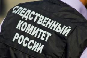 Мигрант пытался изнасиловать петербурженку у дома на улице Пилотов