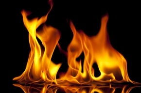 Жилой дом сгорел в Сестрорецке