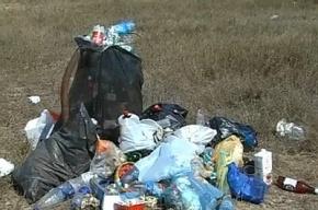Человеческие останки нашли в доме на Железноводской под горой мусора