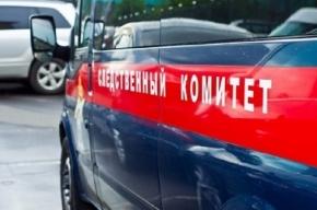 Петербуржца, спасшего женщину от насильника, наградят