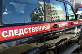 СК возбудил дело о доведении до самоубийства школьника в Петербурге