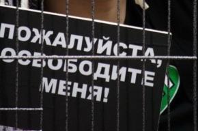 Полицию вызвали на представление цирка с животными в Петергофе