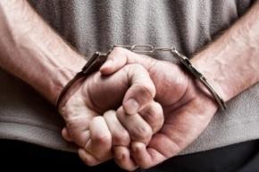 Педофила, надругавшегося над 10-летней девочкой, задержали в Петербурге