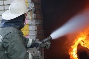 Женщина сгорела в пожаре на Краснопутиловской из-за сигареты