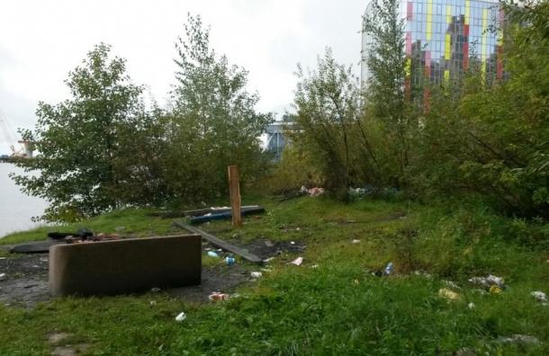 Росприроднадзор обязал чиновников очистить от мусора берег в устье реки Большая Невка