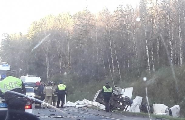 ВДТП наКиевском шоссе влобовом столкновении умер человек— свидетели