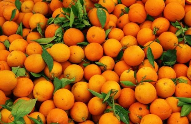 Россия запретила фрукты и овощи из Египта