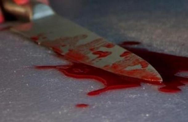 Электрик из Дмитрова ударил ножом петербуржца на улице Димитрова