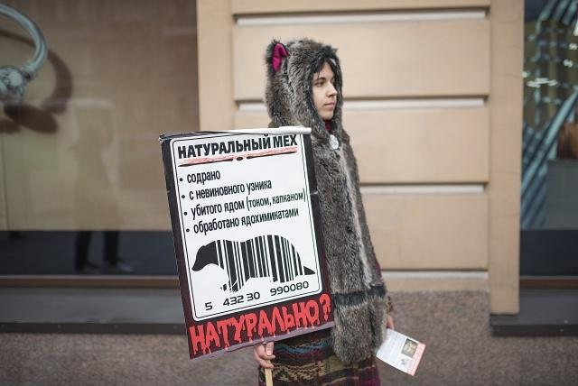 """""""Животные - не одежда"""", 2.10.2016: Фото"""