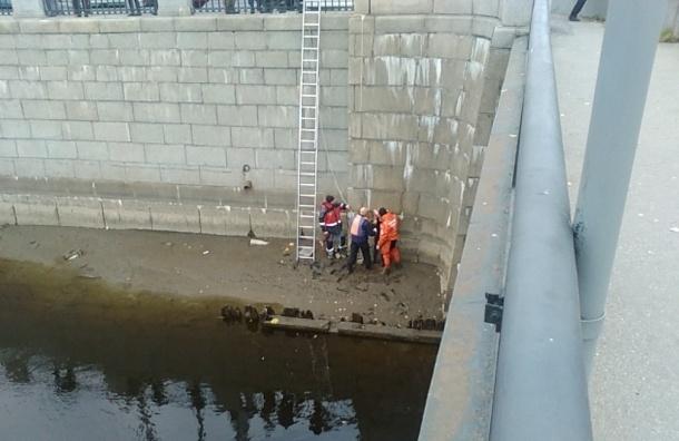 Неадекватная девушка отбивалась от спасателей в Обводном канале