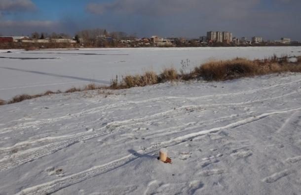 Кол Ивана Грозного спилили в Красноярском крае
