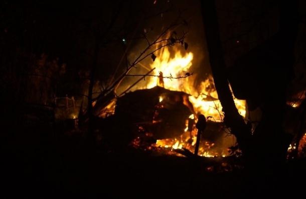 Садоводы Блокадного сада заявили о поджоге