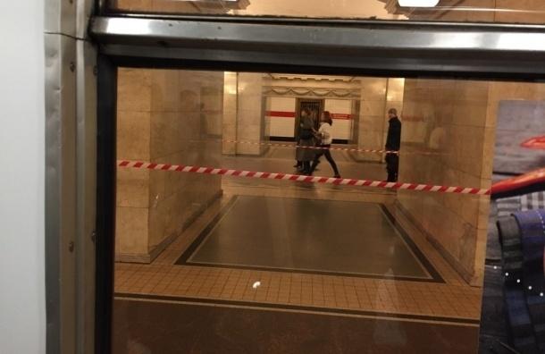 Станцию «Звенигородская» закрыли для пассажиров