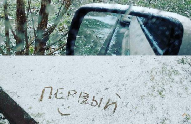 Как петербуржцы встретили первый снег в городе