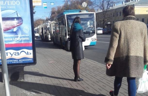 Трамваи и троллейбусы встали на Загородном из-за упавшего фонаря