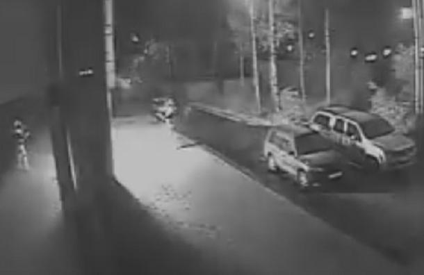 Кадры нападения на «фабрику троллей» появились в Сети
