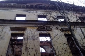 Музей «Петергоф» готов передать «Роснефти» дворец Романовых в Ропше