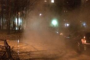 Горячая вода залила двор дома на проспекте Просвещения
