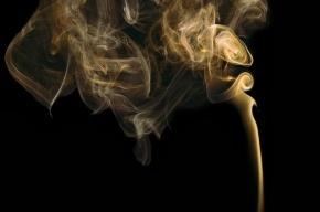 Ученые узнали, зачем подростки начинают курить