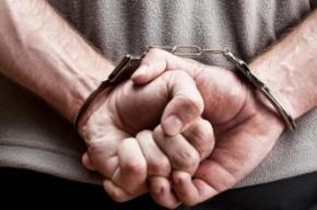 Подростка задержали в Петербурге за вандальные налеты на маршрутки