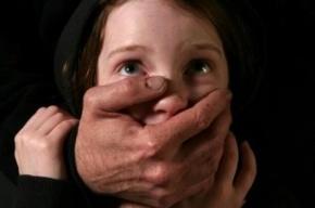 Прохожие отбили 9-летнюю девочку у насильника на Бассейной улице
