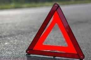 Водитель в Волгоградской области сбил насмерть трех девочек на переходе