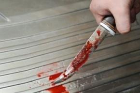 Житель Красноярска поругался с подругой, убил её и расчленил