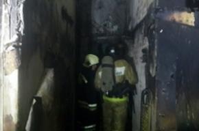 Садовые домики сгорели в Металлострое