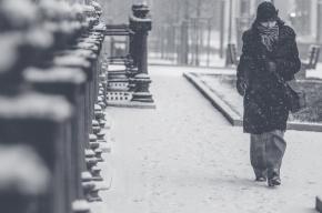 Снегопады возвращаются в Петербург