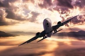 Начата проверка по факту смерти пассажирки самолета Новосибирск-Петербург