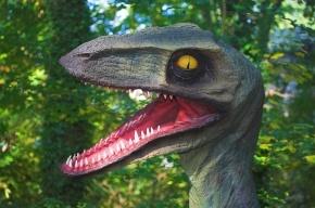 Палеонтологи нашли окаменелый мозг динозавра
