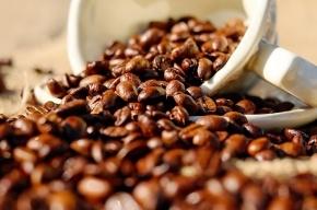 Ученые узнали, почему людям не уснуть после выпитой чашки кофе