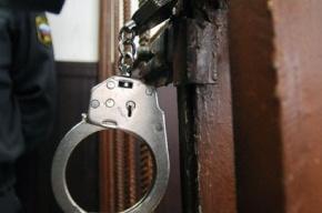 Убийство и изнасилование 11-летней девочки грозит жителю Коми пожизненным
