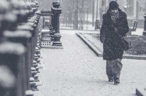 Синоптики снова прогнозируют снегопад в Петербурге