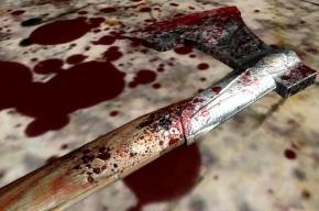 Пенсионерка зарубила топором мужа и пыталась убить внуков