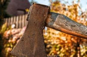 Сын зарубил мать топором в Ленобласти, тело выбросил в канаву