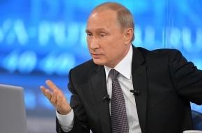 Путин выпустил шесть лошадей Пржевальского из загона