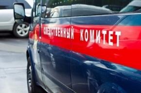 Магнитогорец убил двух детей и изнасиловал 11 школьников