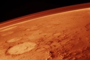 NASA обнаружило на Марсе креветок и скорпионов
