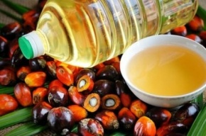 Молочную продукцию с пальмовым маслом пометят специальной маркировкой