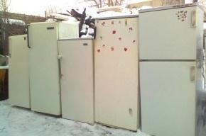 Миллионный долг девушка из Петербурга отдала после ареста холодильников