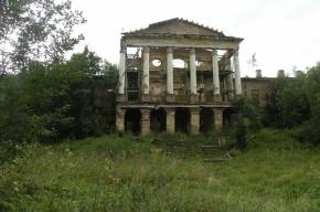«Роснефть» просит в аренду парк и дворец в Ропше