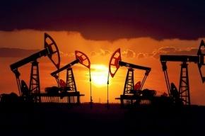 Стоимость нефти бьет рекорд 2016 года после слов Путина