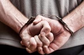 Двое петербуржцев арестованы за сбыт и хранение полкило наркотика