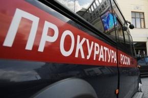 Генпрокуратура проверила выборы в Петербурге