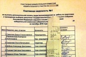 Финансовые махинации заметили в избиркомах Адмиралтейского района «Наблюдатели»