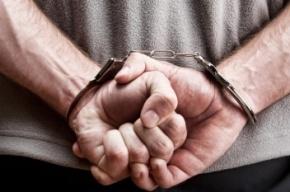 «Вежливый» разбойник в Ленобласти извинился перед продавщицей после ограбления